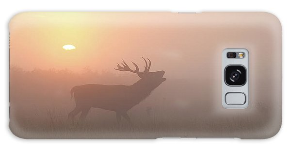 Misty Morning Stag Galaxy Case