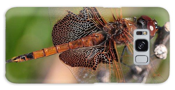 Mocha And Cream Dragonfly Profile Galaxy Case