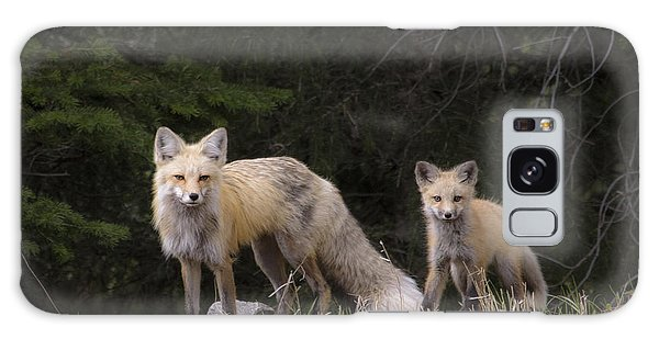 Momma Fox With Her Kit Galaxy Case by Sonya Lang