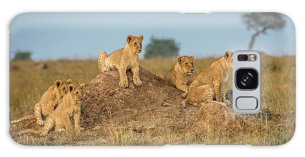 Lion Galaxy Case - Mom's Coming Back - Dinner Is Almost Here. by Jeffrey C. Sink