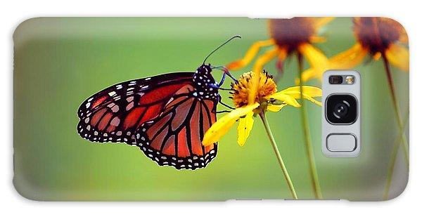 Monarch 2013 Galaxy Case