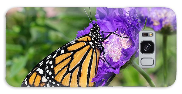 Monarch And Pincushion Flower Galaxy Case