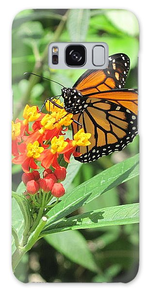Monarch At Rest Galaxy Case