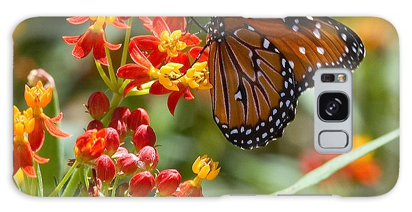 Galaxy Case featuring the photograph Monarch  At Work  by Mae Wertz