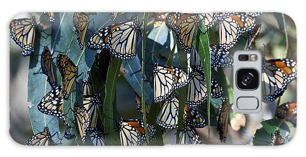 Monarch Butterflies Natural Bridges Galaxy Case