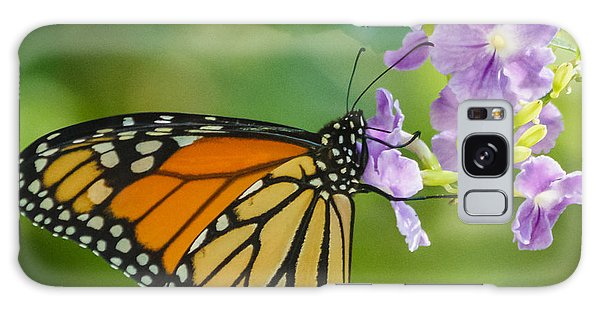 Monarch Butterfly Galaxy Case by Jane Luxton