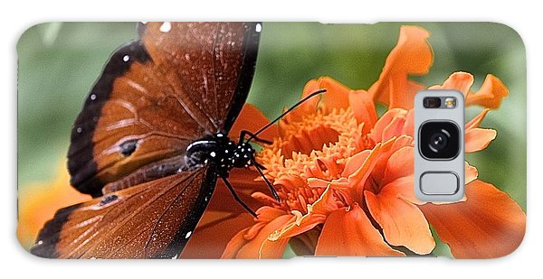 Monarch Butterfly On Marigold Galaxy Case