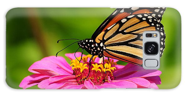 Monarch Butterfly On Zinnia Galaxy Case