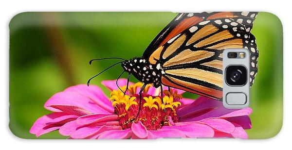 Monarch Butterfly On Zinnia Galaxy Case by Olivia Hardwicke