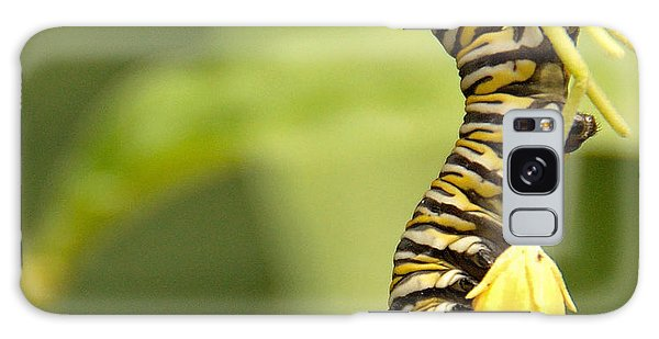 Monarch Caterpillar Galaxy Case