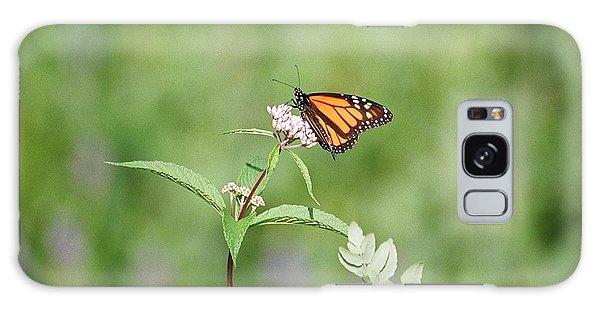 Monarch Galaxy Case by David Porteus