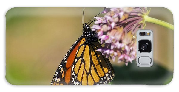 Monarch On Milkweed Galaxy Case