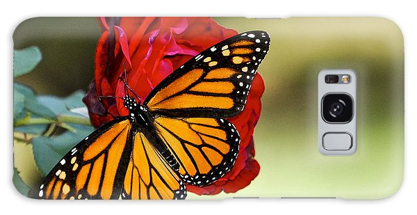 Monarch On Rose Galaxy Case