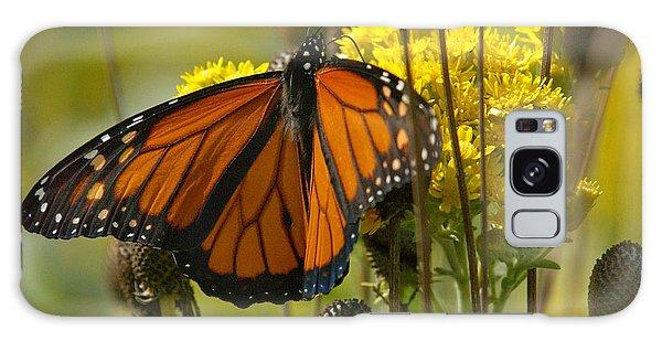 Monarch On Stiff Goldenrod Galaxy Case