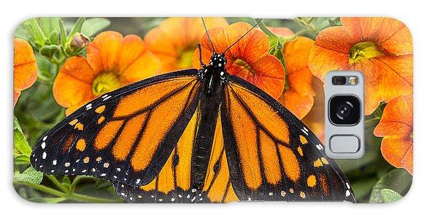 Monarch Resting Galaxy Case