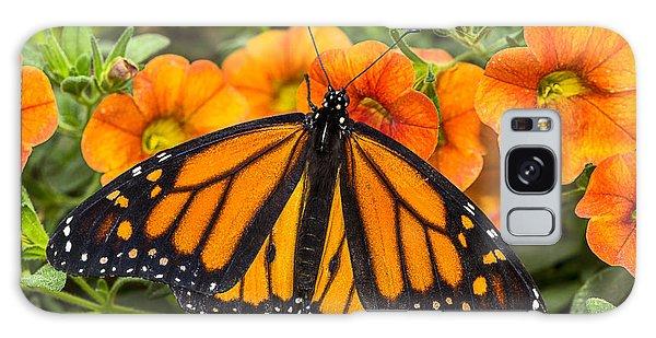 Monarch Galaxy Case - Monarch Resting by Garry Gay