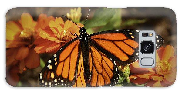 Monarch Spotlight. Galaxy Case