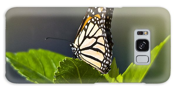 Monark Butterfly No. 2 Galaxy Case