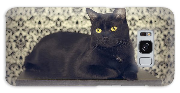 Voodoo Galaxy Case - Mongo The Robust Cat by Jennifer Ramirez