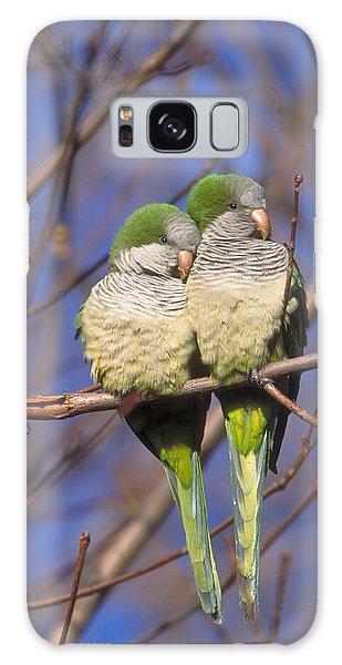 Monk Parakeets Galaxy Case