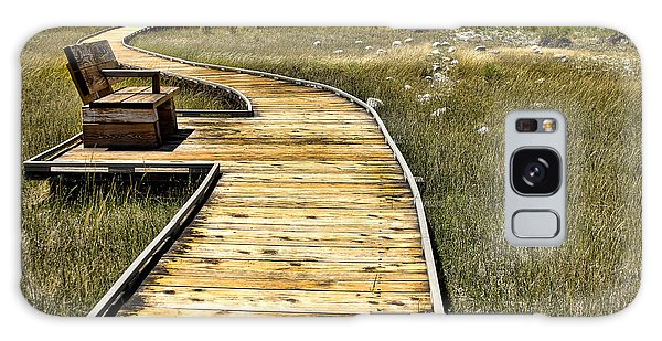 Mono Lake Boardwalk  Galaxy Case