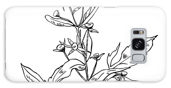 Botanical Garden Galaxy Case - Monochrome Image Beggarticks Herb by Irinia