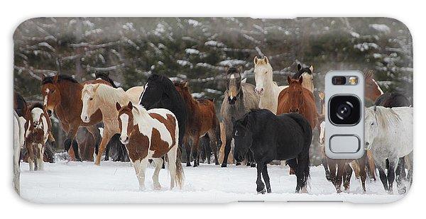 Montana Herd Galaxy Case