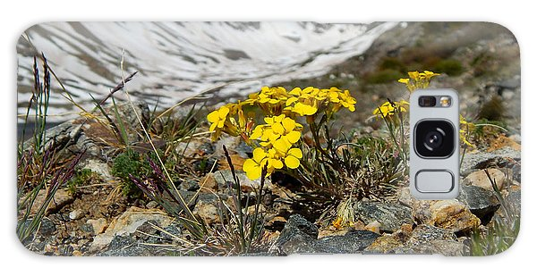 Blue Lakes Colorado Wildflowers Galaxy Case