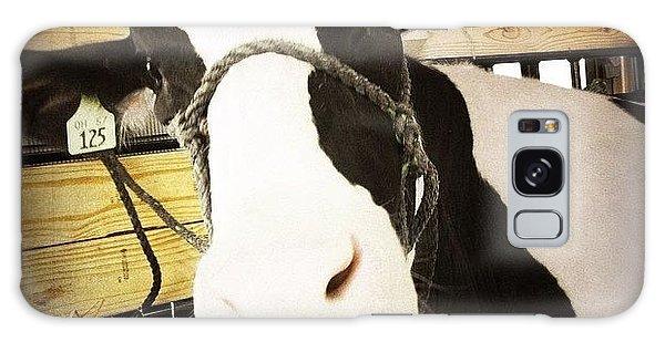 Ohio Galaxy Case - Moo Cow by Natasha Marco