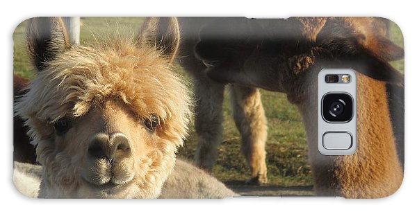 Moonacre Alpacas 2 Galaxy Case