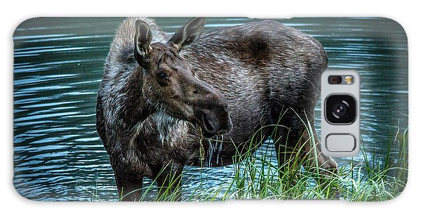 Moose In The Water Galaxy Case