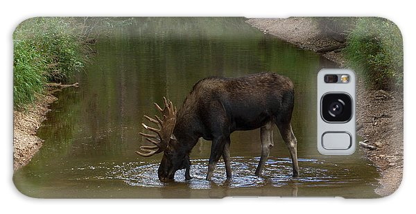 Moose Sipping Water Galaxy Case