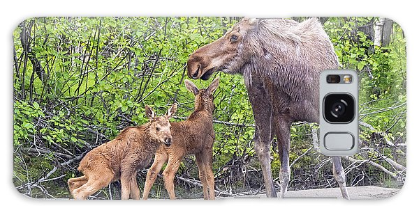 Moose With Twins Galaxy Case by Stephen  Johnson