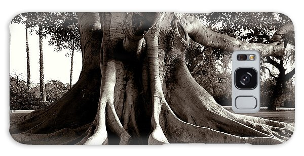 Moreton Bay Fig Galaxy Case