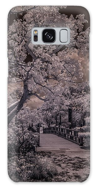 Morikami Gardens - Bridge Galaxy Case
