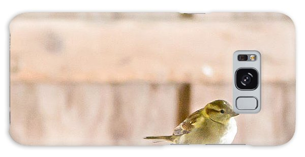 Morning Bird Galaxy Case by Courtney Webster