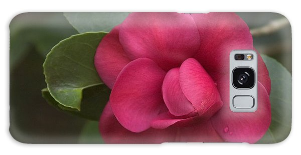 Morning Camellia Galaxy Case by Penny Lisowski