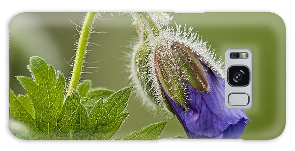 Morning Cranesbill  Galaxy Case