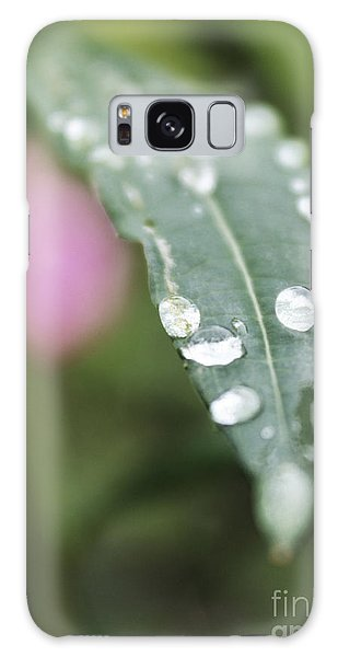 Galaxy Case featuring the photograph Morning Dew by Kate Avery
