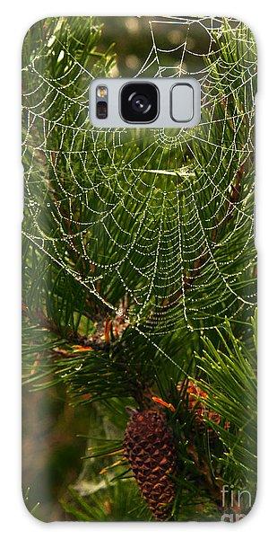 Morning Dew On Cobweb Galaxy Case