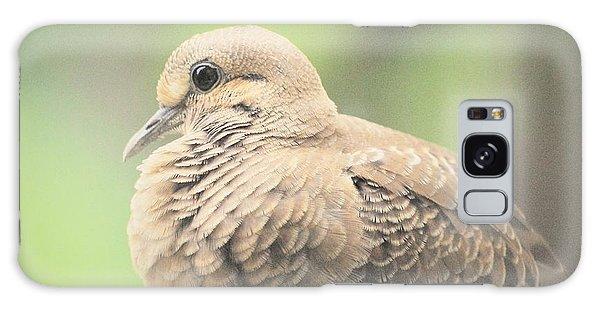 Morning Dove Galaxy Case