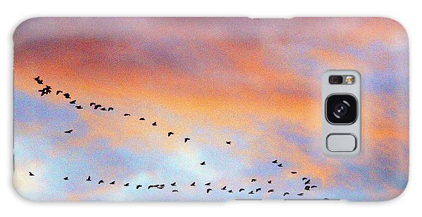 Morning Geese Galaxy Case