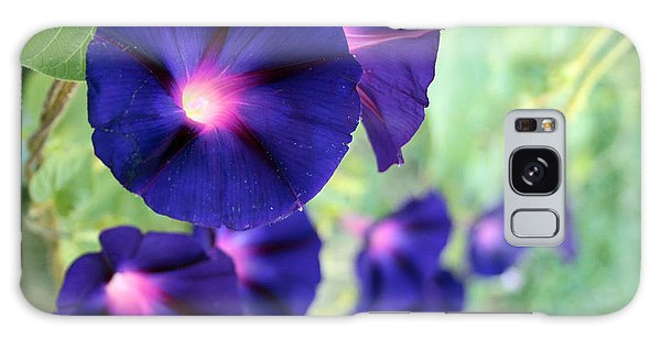 Morning Glory Climbing Galaxy Case