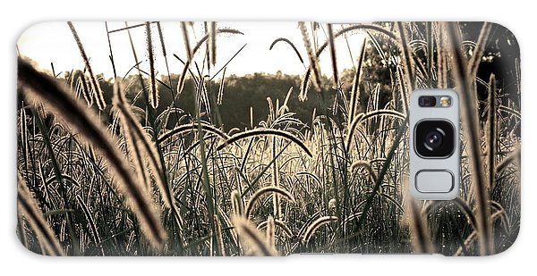 Morning Grasses  Galaxy Case