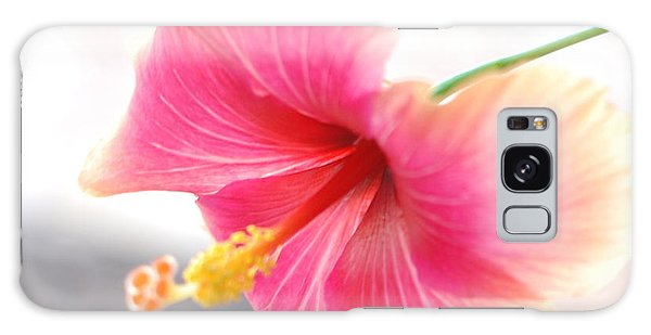 Morning Hibiscus In Gentle Light - Square Macro Galaxy Case