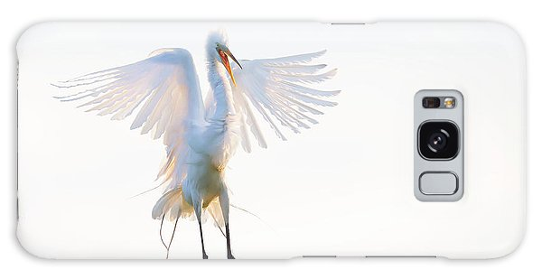 Egret Galaxy Case - Morning Landing by Phillip Chang