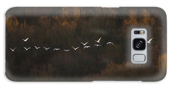 Goose Galaxy Case - Morning Mood by ??? / Austin