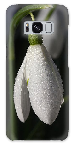 Morning Snowdrops Galaxy Case