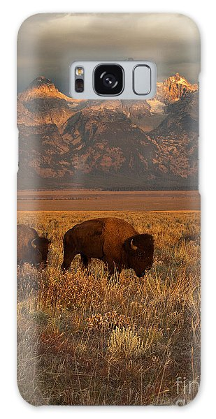 Morning Travels In Grand Teton Galaxy Case by Sandra Bronstein