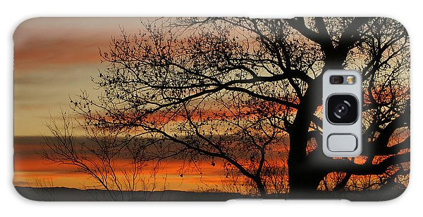 Morning View In Bosque Galaxy Case by James Gay